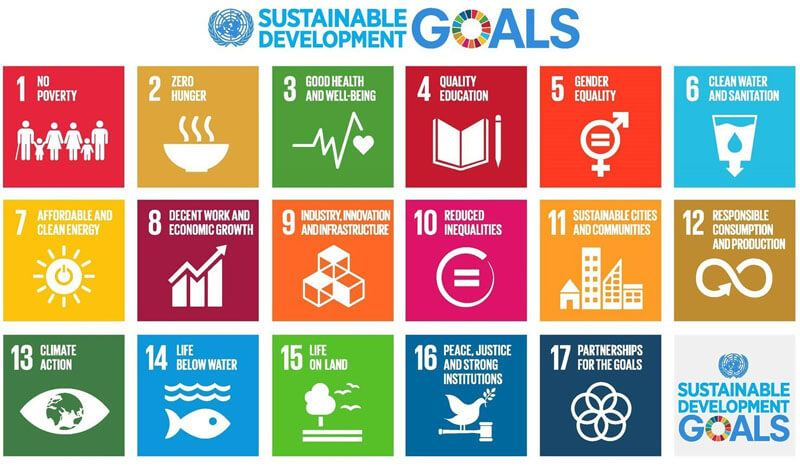 United Nations Sustainable Development Goals 2020